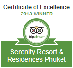 Tripadvisor Certificate of hotel Excellence 2013