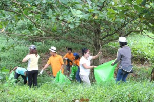 Nai-Harn-Beach-Cleaning-November-2015-8