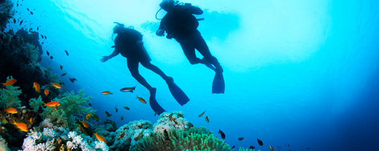 Scuba Diving Trips For Guests Of Serenity PhuketSerenity